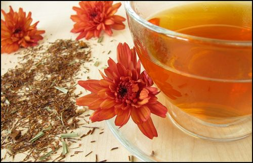 The Many Health Benefits of Drinking Rooibos Tea